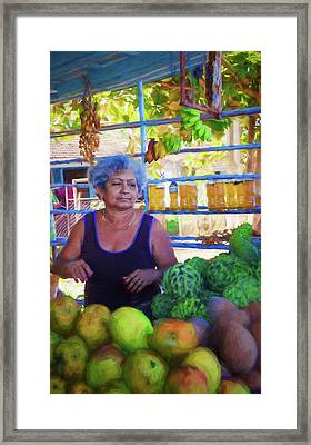 Cuban Fruit Stand Framed Print by Joan Carroll