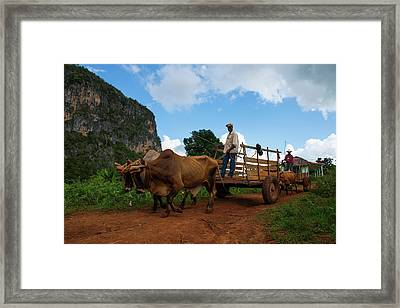 Cuban Worker II Framed Print