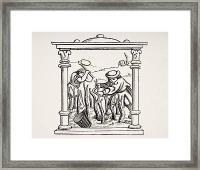 Culture Of The Vine. 19th Century Framed Print