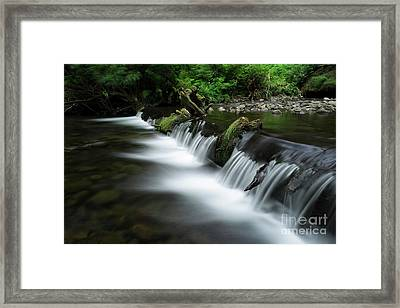 Cummins Creek In Oregon Framed Print by Masako Metz