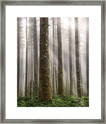 Cummins Wilderness Framed Print by Leland D Howard