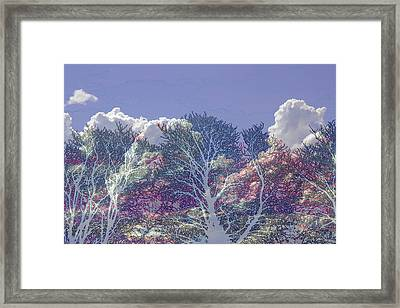 Framed Print featuring the photograph Cumulus And Trees by Nareeta Martin