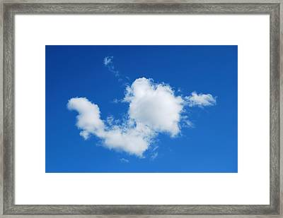Framed Print featuring the photograph Cumulus by Marilynne Bull