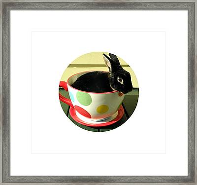 Cup O Bun T Shirt Framed Print by Valerie Reeves