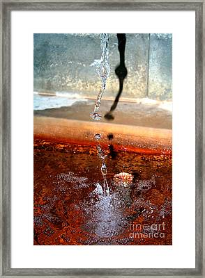 Framed Print featuring the photograph Curative Water by Sascha Meyer
