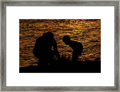Curiosity  Framed Print by Wayne Atkinson