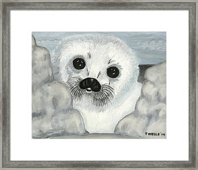 Curious Arctic Seal Pup Framed Print by Tanna Lee M Wells