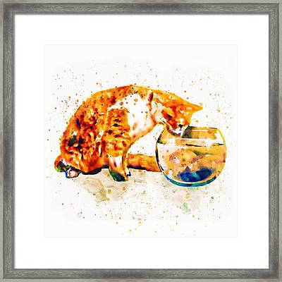 Curious Cat  Framed Print