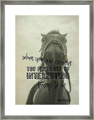 Curious Kirby Quote Framed Print by JAMART Photography