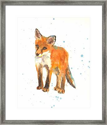 Curious Kit Framed Print