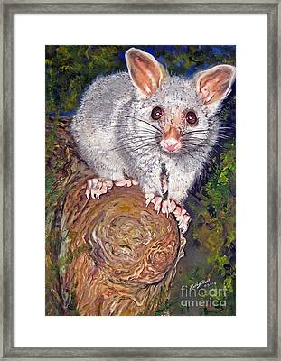 Curious Possum  Framed Print