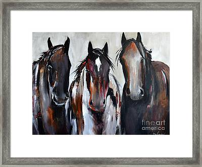 Curious Three Framed Print by Cher Devereaux