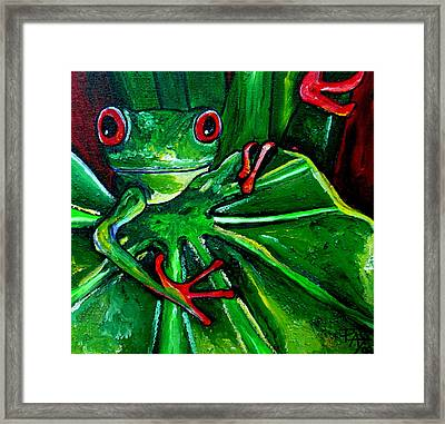 Curious Tree Frog Framed Print by Patti Schermerhorn