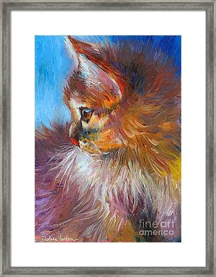 Curious Tubby Kitten Painting Framed Print by Svetlana Novikova