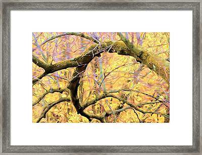 Curled Branch In Yellow Framed Print