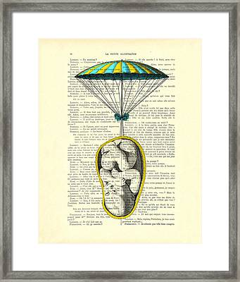 Curled Up Baby With Parachute Framed Print
