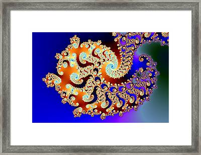 Curly Complexity Framed Print by Mark Eggleston