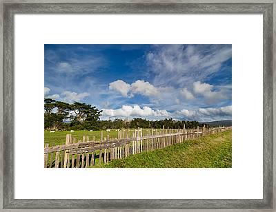 Curly Lane Cattle Fence Framed Print