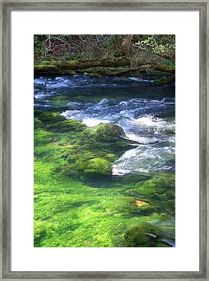 Current River 8 Framed Print by Marty Koch