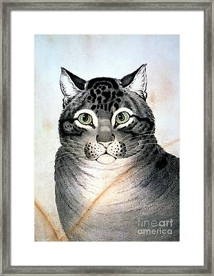 Currier And Ives Cat Framed Print by Granger