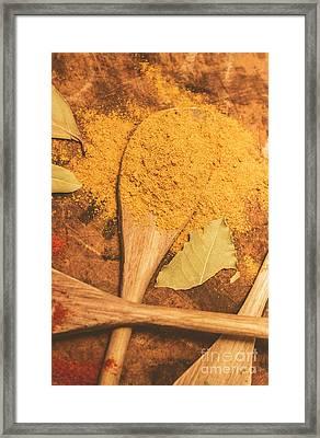 Curry Powder Spice Framed Print