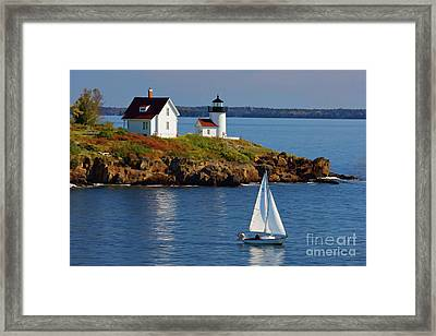 Curtis Island Lighthouse - D002652b Framed Print by Daniel Dempster