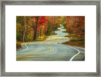 Curvaceous Framed Print by Bill Pevlor