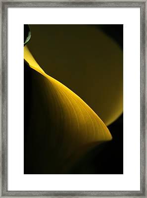 Curve Framed Print