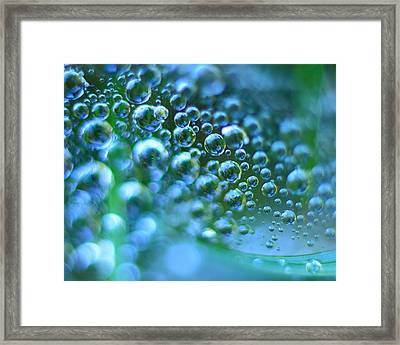 Curve Of The Web Framed Print
