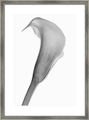 Framed Print featuring the photograph Curves Ahead by Mike Lang