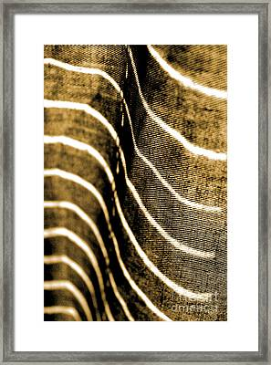 Curves And Folds Framed Print