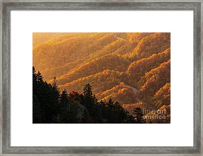 Smoky Mountain Roads Framed Print