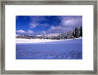 Custer State Park Framed Print by Barry Shaffer