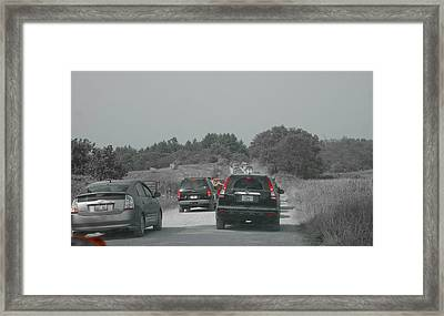 Custom Ag 086654 Framed Print