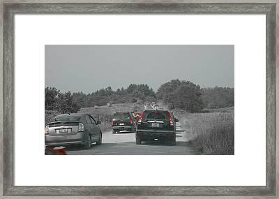 Custom Ag 086654 Framed Print