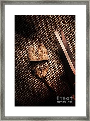 Cut Heart Leaf, Fall Of Love Framed Print by Jorgo Photography - Wall Art Gallery