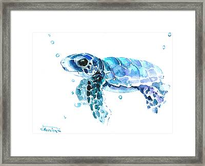 Cute Baby Turtle Framed Print