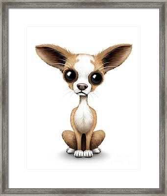 Cute Chihuahua Puppy  Framed Print by Jeff Bartels