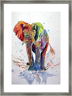 Cute Colorful Elephant Framed Print