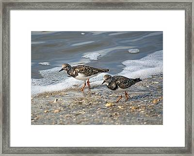 Cute Couple Framed Print