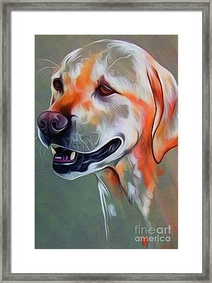 Cute Dog 01 Framed Print