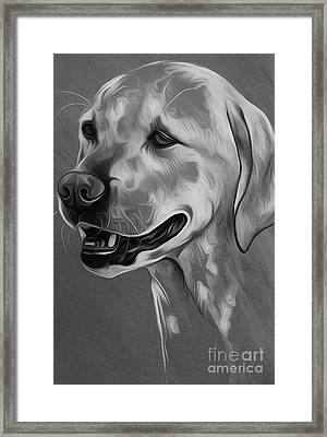 Cute Dog 03 Framed Print
