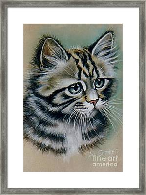 Cute Kitten Framed Print by Val Stokes