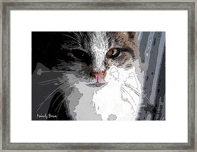 Cute Kittie Framed Print