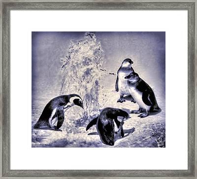Cute Penguins Framed Print