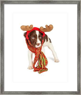 Cute Puppy Christmas Reindeer Framed Print