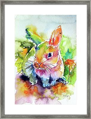 Framed Print featuring the painting Cute Rabbit by Kovacs Anna Brigitta