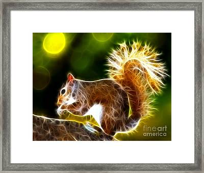 Cute Squirrel Framed Print