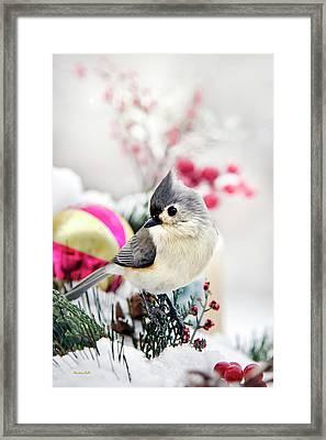 Cute Winter Bird - Tufted Titmouse Framed Print by Christina Rollo