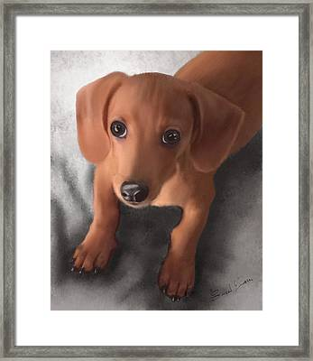 Cutest Pup Ever Framed Print by Sannel Larson